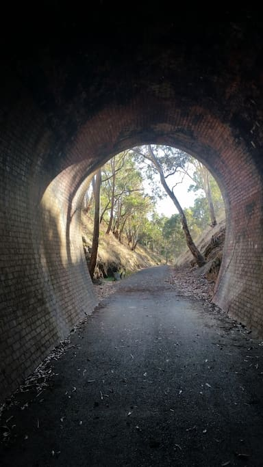 The light at the end of the Cheviot Tunnel, Rail Trail