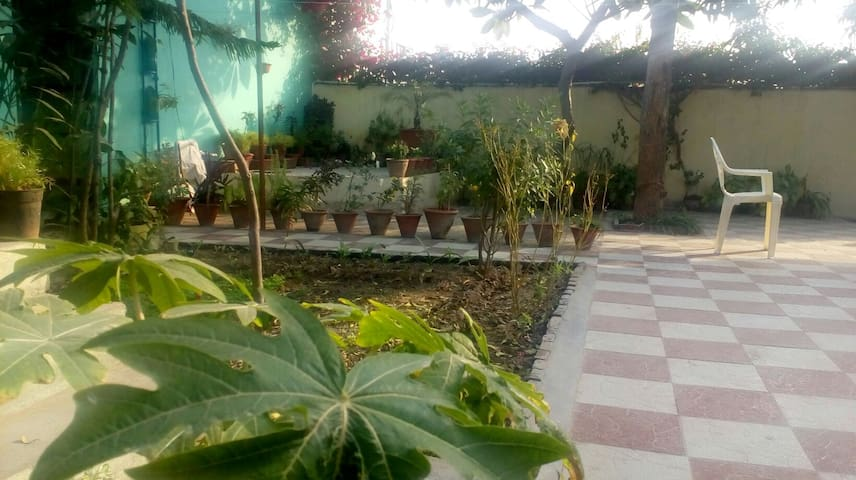 Another look to organically maintained garden includes fruits, veggies, herbs and flowers