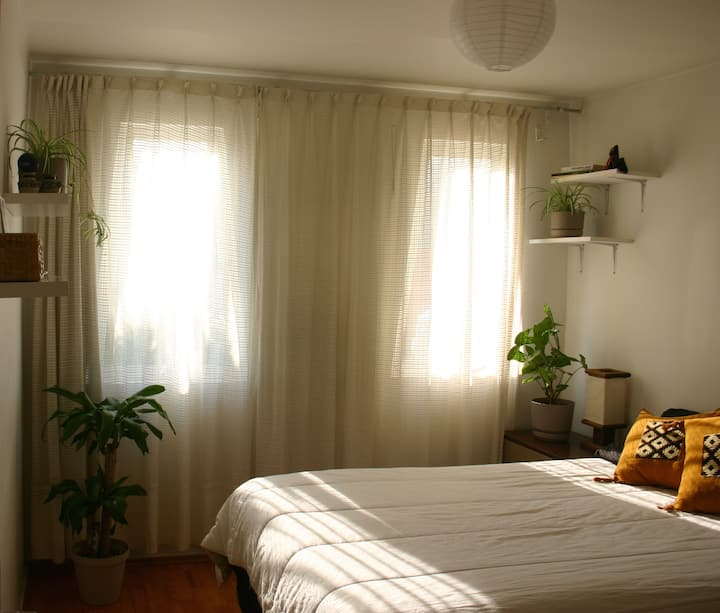 Lovely and sunny room in Coyoacán