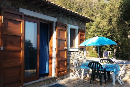 House in the wood 2 min. from beach - Toscana, IT