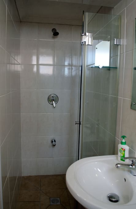 Ensuite toilet and shower.