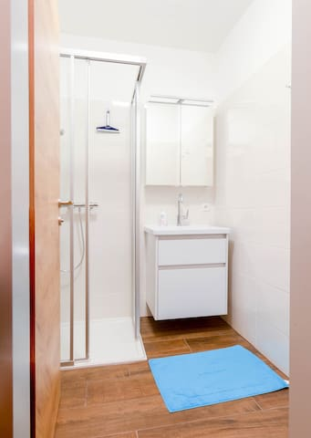 Bad mit Dusche, WC und allem, was man so braucht. Bathroom with shower and all you need for your stay.