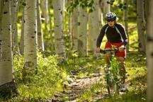 Mountain biking on Skyline Drive.