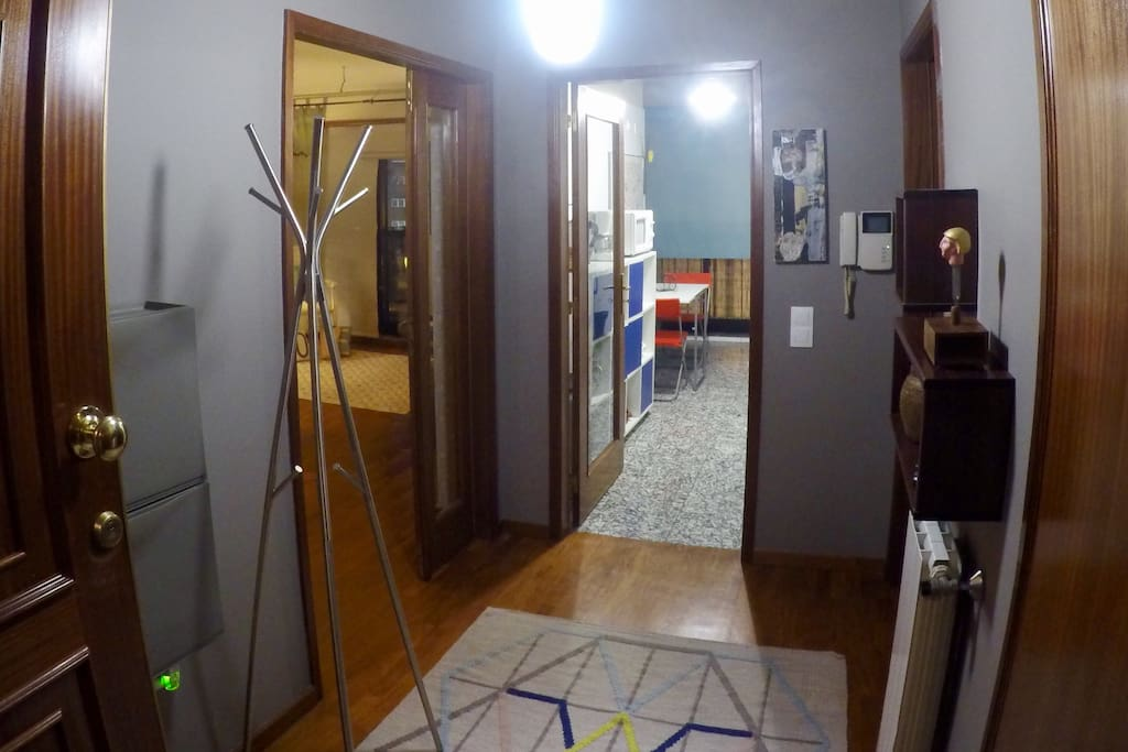 Entrance of the Apartment. Left - Living room Front - Kitchen Right - Bedroom and Bathroom