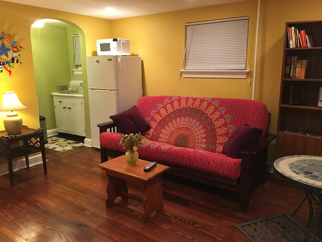 Comfy, quiet and cute in Takoma Park. - Takoma Park - Apartment