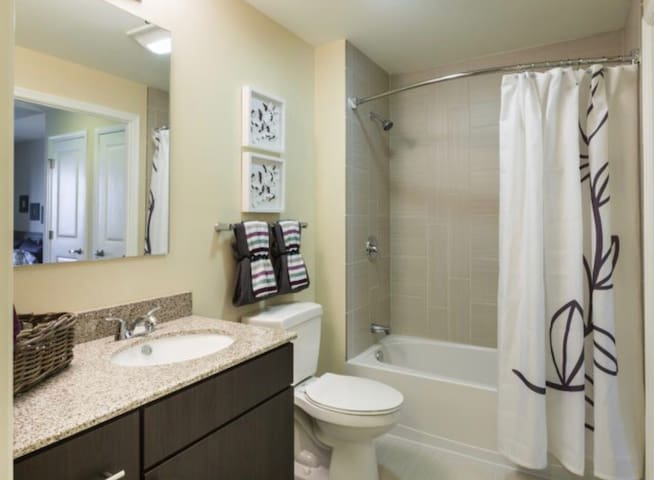 1 Bedroom ACROSS FROM THE DC METRO - Silver Spring - Huoneisto