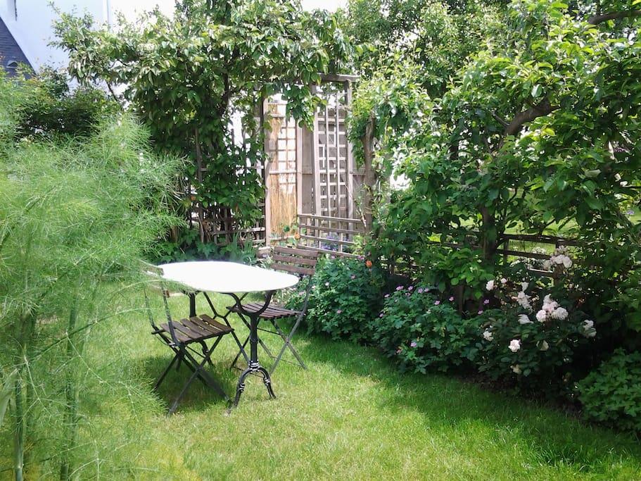 le petit jardin 50m²