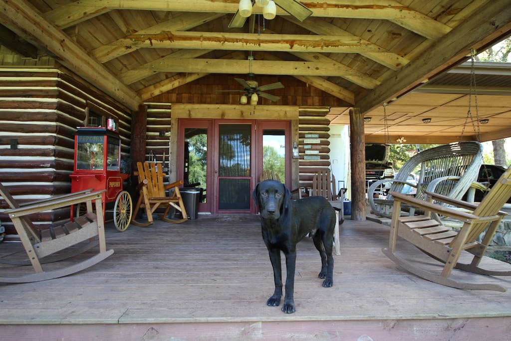 Back porch—with plenty of seating. (Sorry, dog not included!) Feel free to bring yours!