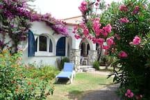 Apto.F con su jardín y terraza