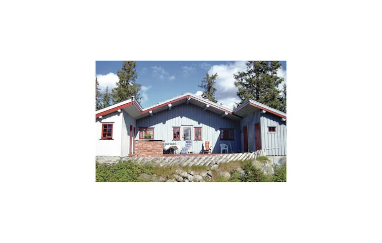 Holiday cottage with 3 bedrooms on 65m² in Sjusjøen