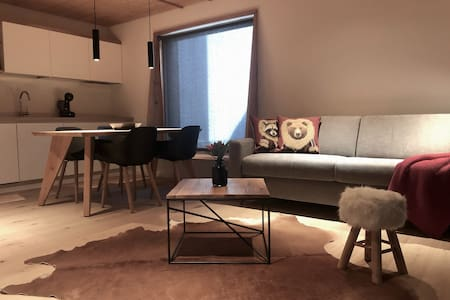 Duplex apartment with city view and balcony
