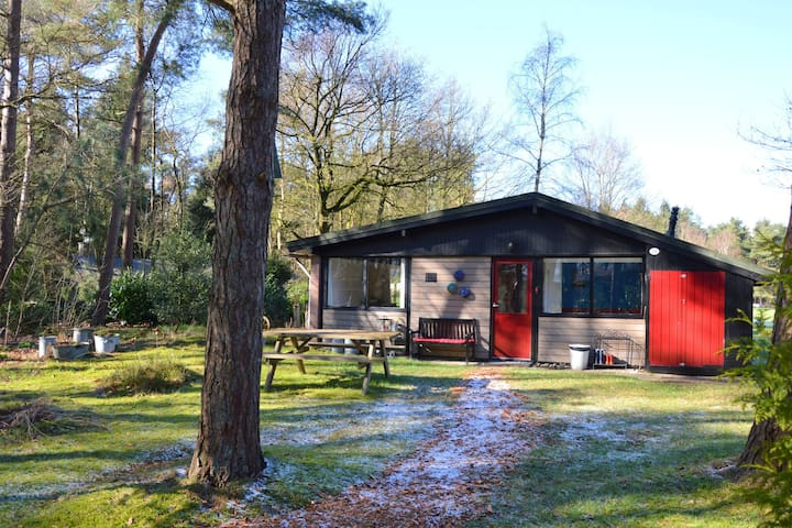 Charming Holiday Home in Overijssel by the Forest