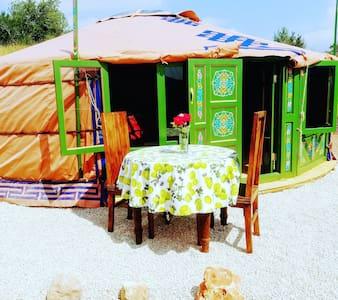 Yurta Grenadilla