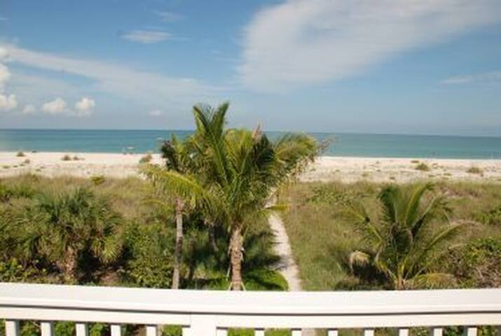 Turtleback 12 - Boca Grande