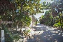 the dirt road winds through the lush tropical jungle we suggest a 4x4 rental for getting to Tulum center approximately 10|15  depending on road conditions