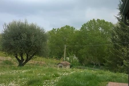 Villa sul fiume - Cesena - Talo