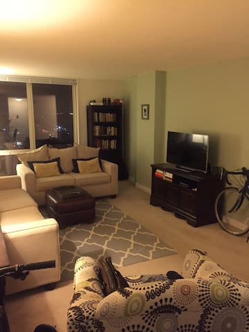 1 bedroom/1 bathroom unit in Silver Spring, MD - Silver Spring - Apartment