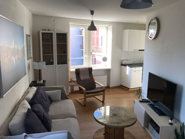 Cosy apartment in the city near the lake