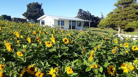 The SunSet Cottage 5min from Oamaru, and Kakanui.