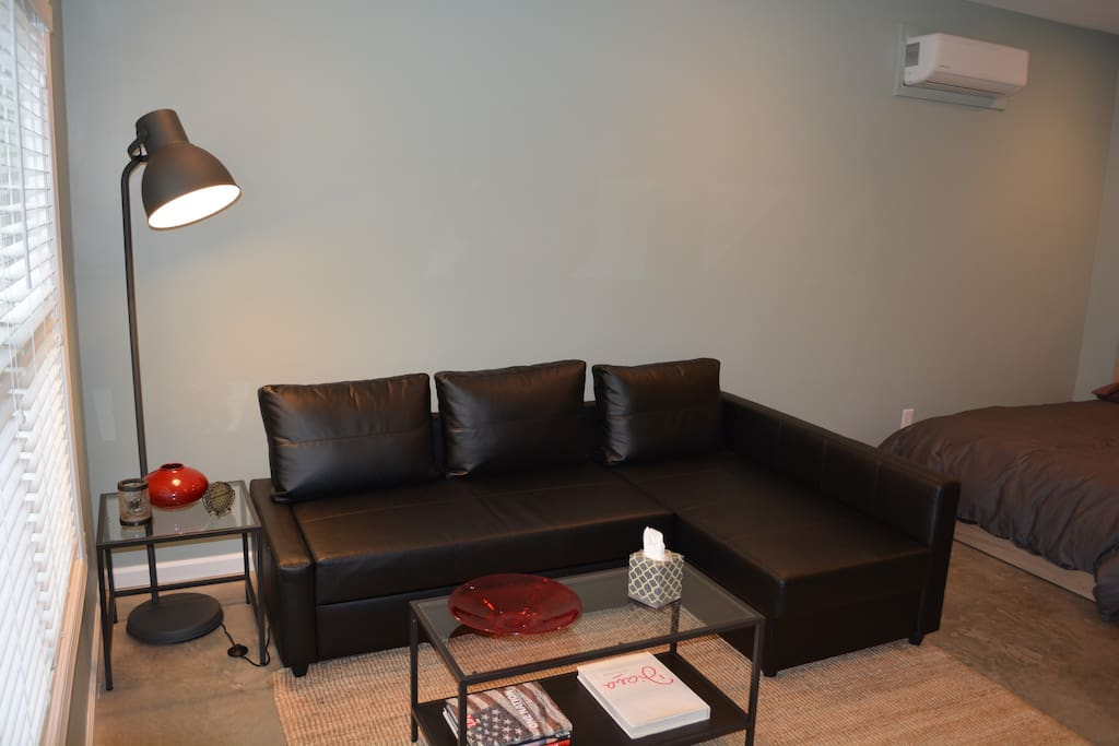 Comfortable living room with leather sofa that converts to a queen size bed.