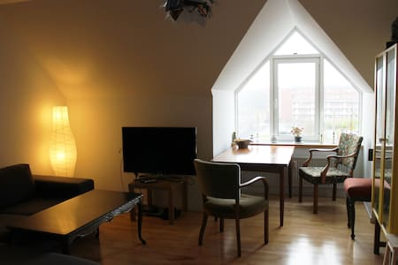 Nice and charming apartment nearCPH