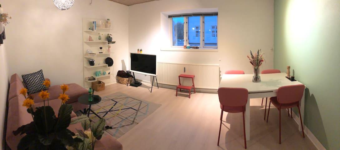 Hyggelig lejlighed i centrum af Odense