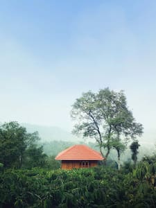 Tree House - Wayanad - Baumhaus