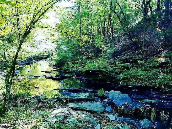 "Parksland Retreat ""Creekside P3"" Campsite"