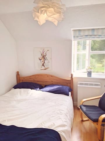 Bright bedroom with king size bed - Reading - Daire