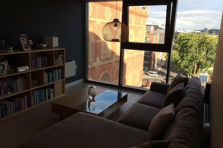 Modern, high spec. one bedroom central apartment - 布里斯托爾