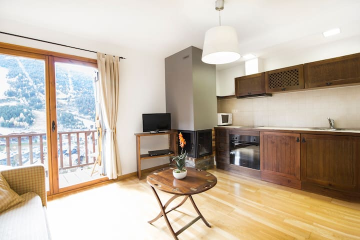 One bedroom apartment with fireplace. TTESQ33