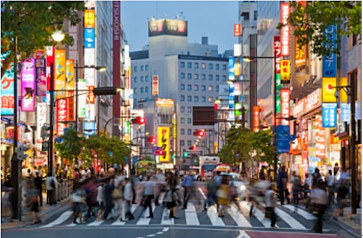 池袋最繁华的街道,是从车站向东西延伸,每天大约有100万人流量。日本的年轻人,将这条街简称为【ブクロ(袋)】