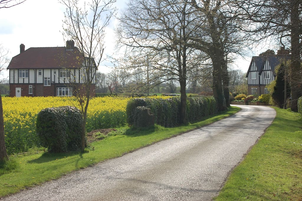 Tudor House on left (Portington Lodge on right available soon).