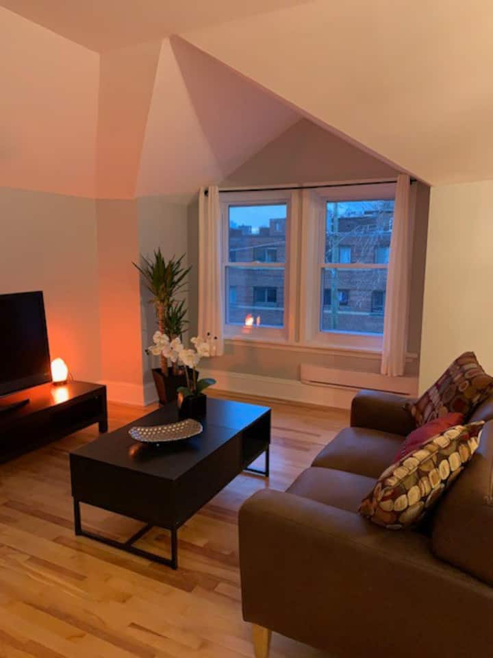 Gorgeous comfortable loft!Skate the Rideau Canal!