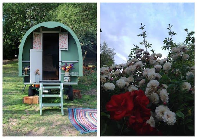 Romantic Dorset Gypsy Caravan - Dorset - Barraca
