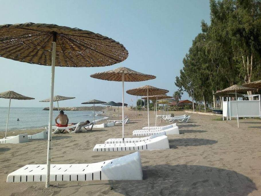 strand met ligbedden