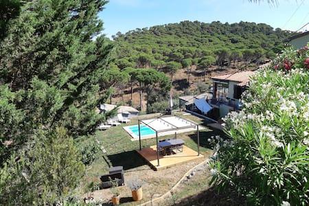 Xalet con jardín y piscina privada