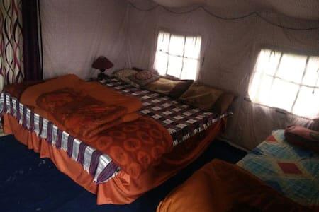 Exotica camps - Manali - Teltta