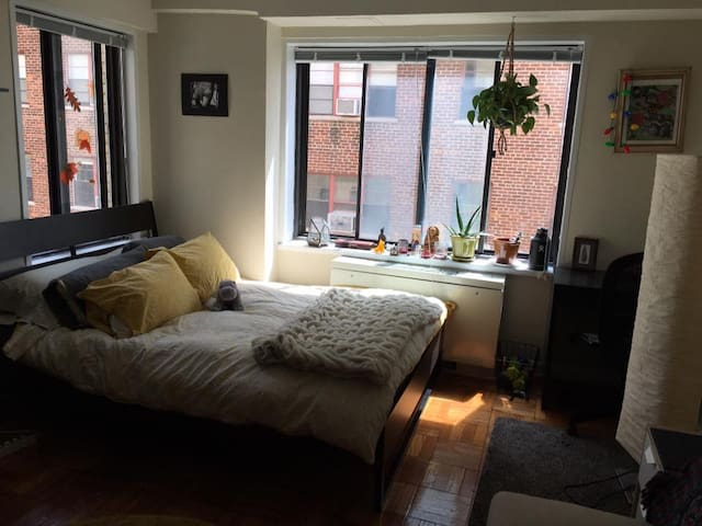 Cathedral Heights Sunny Studio - Washington - Apartamento