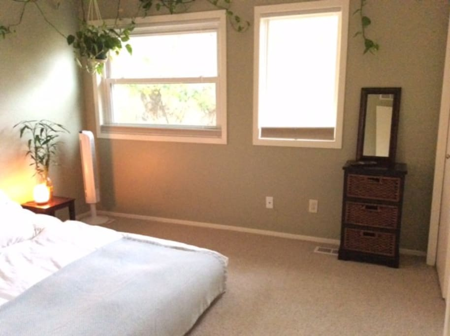 Bright and sunny east facing master bedroom features a king sized bed