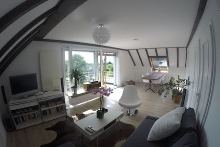 Beautiful, newly refurbished apartment in Basel