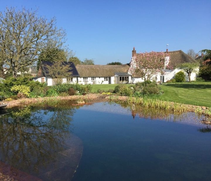Large Thatched Cottage in Heart of Devon