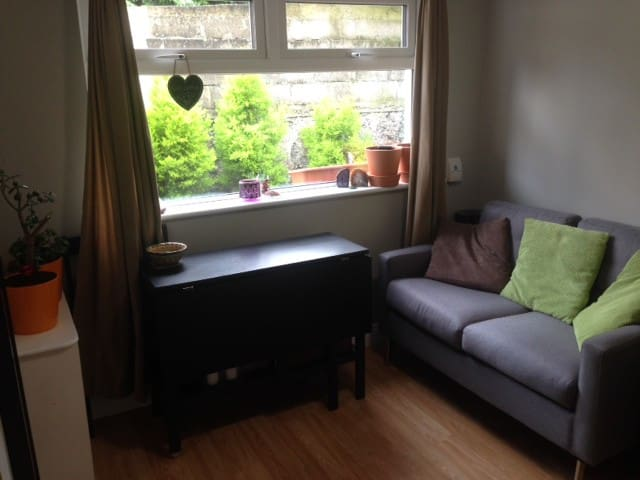 Cozy apartment in a quiet area in a great location - Dublin