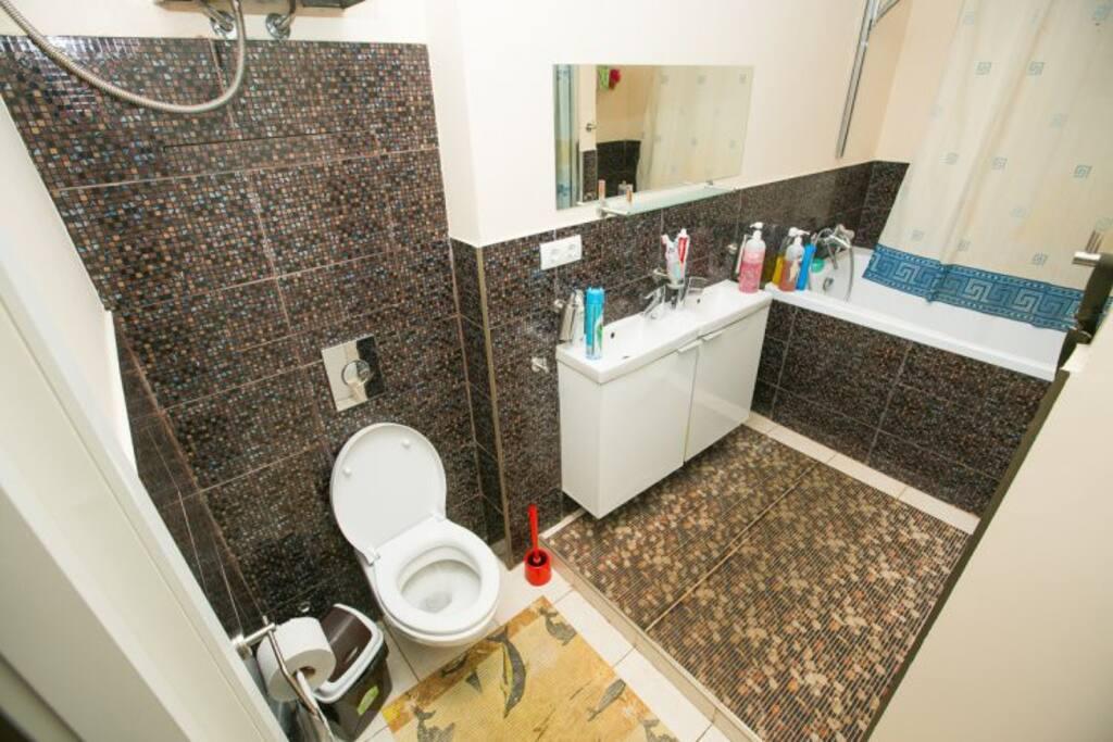 Общая ванна и туалет