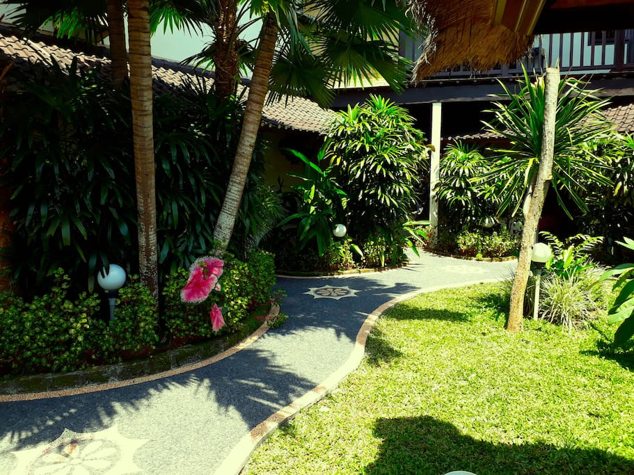 Day time in our tropical garden area where our three private garden bungalows are located. New small stone Pathway taking you to your Garden Bungalow #4, turn left at the flower.