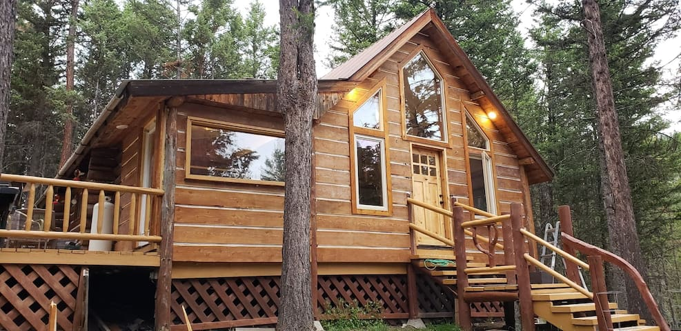 (New)Flying Moose Cabin. Wild Game everywhere