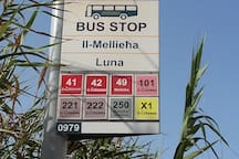 Luna bus stop + bus number  to all destinations .