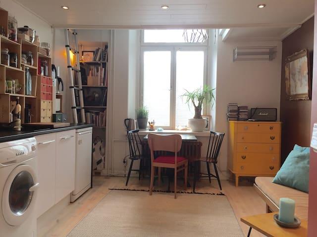 Cute central studio + mobile wifi