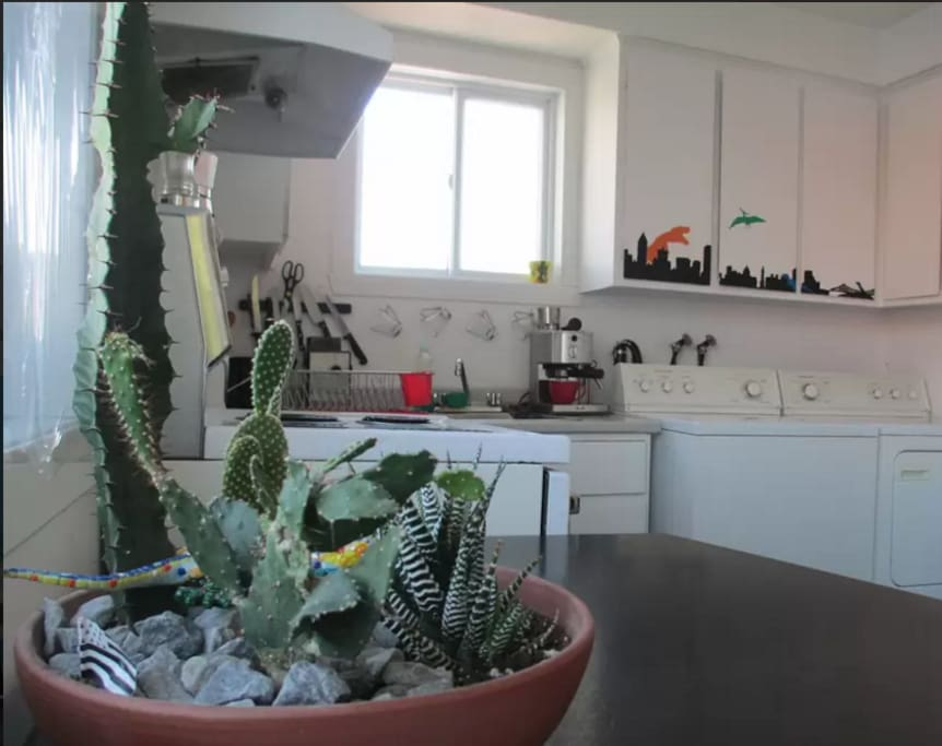 Fully equiped kitchen with washing machine and dryer