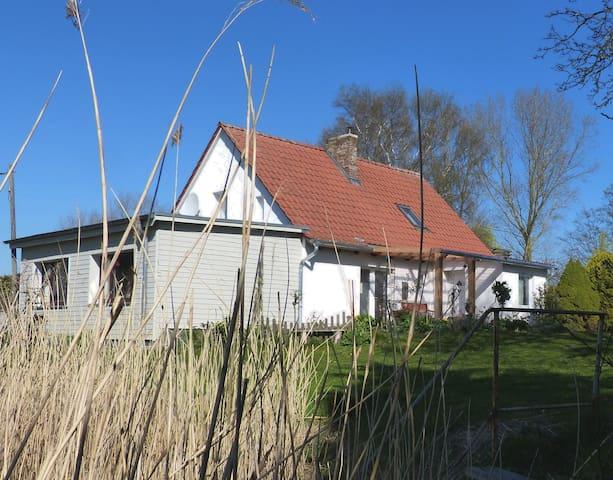 Boddenblick - ruhige Idylle an der Ostsee